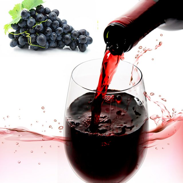 Unbreakable Transparent Plastic Wine Glass